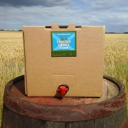 Elderflower - 20L Ciderbox